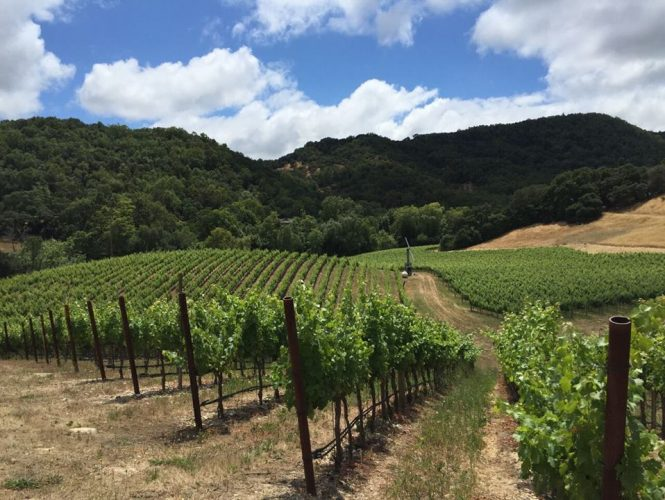 July 29th 2016 Wine Tasting Dinner Featuring Trefethen Family Vineyards