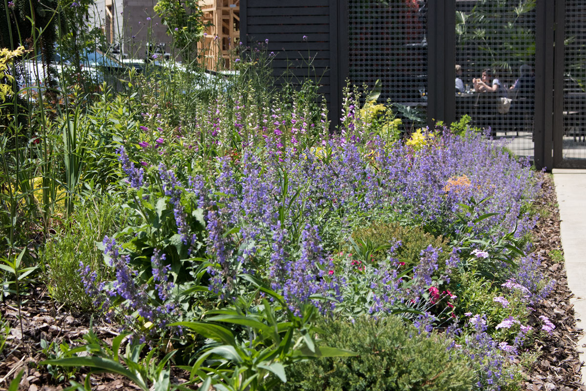 Undercurrent Restaurant Private Patio and Pollinator Garden